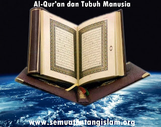 AL-QUR'AN DAN TUBUH MANUSIA