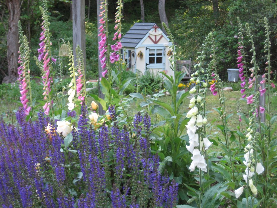 Whimsical cottage gardening sit with me in my garden for Landscape my garden