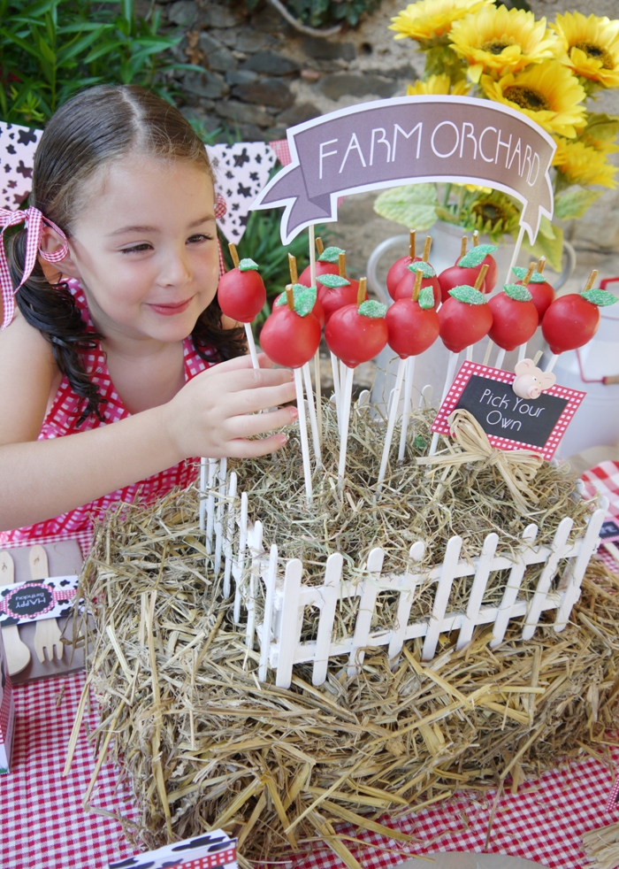 Apple Cake Pops Recipe and a DIY Barnyard Centerpiece - BirdsParty.com