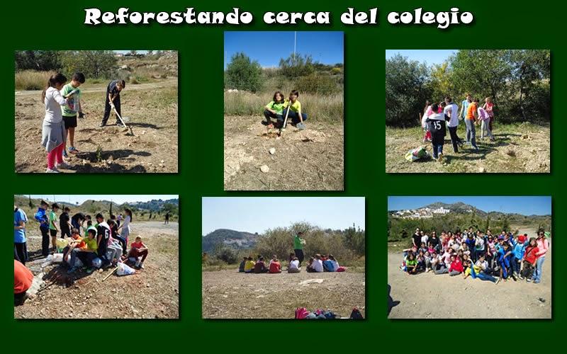 https://dl.dropboxusercontent.com/u/44858821/CURSO%2014-15/reforestando2.jpg