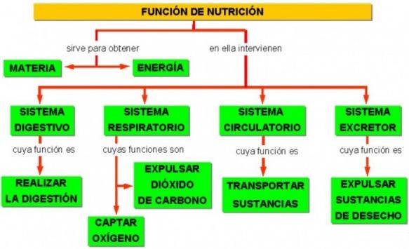 como se transforma la materia en energia
