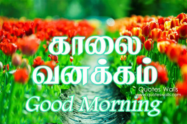 Ordinaire Loving Good Morning Tamil Sms Wishes Pictures