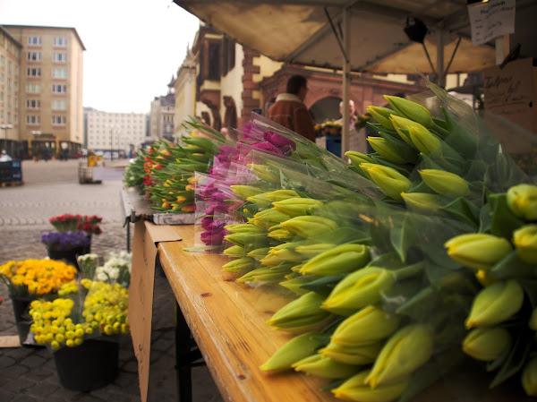 GIMP Leipzig LGM market flowers photowalk