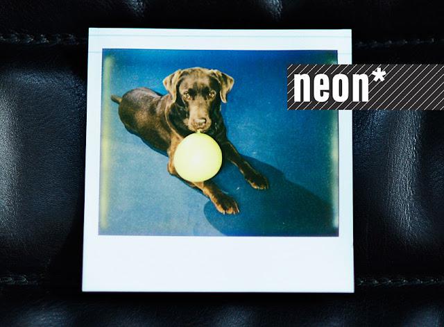neon-fotografie impossible polaroid