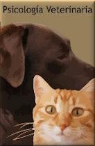 Si quieres ayuda con tu perro o gato, visítame en: