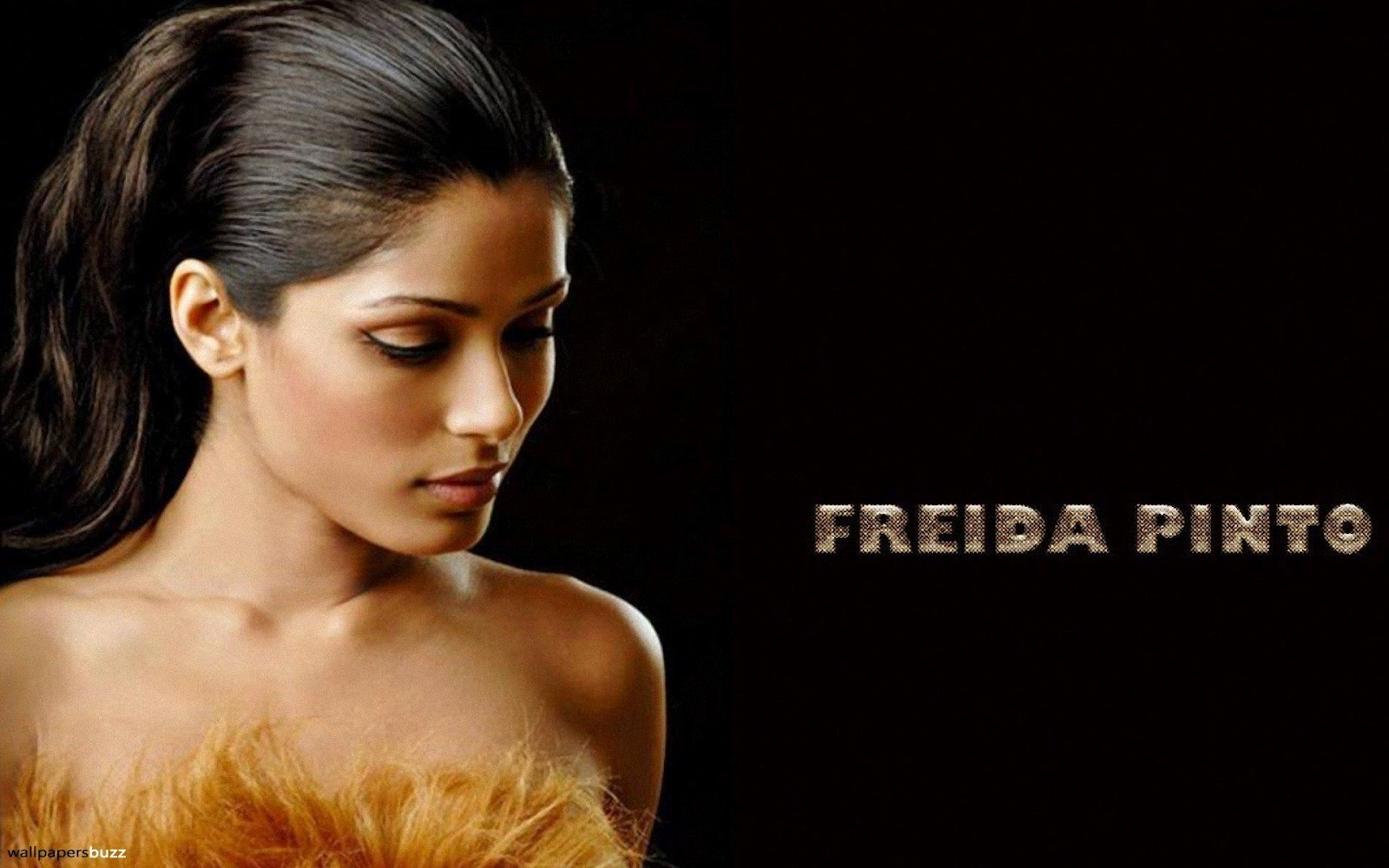 http://4.bp.blogspot.com/-v-WK49DkWt4/T8450EpSnwI/AAAAAAAABFg/vq1R4l3vV80/s1600/Freida_Pinto_Photo_in_HD.jpg