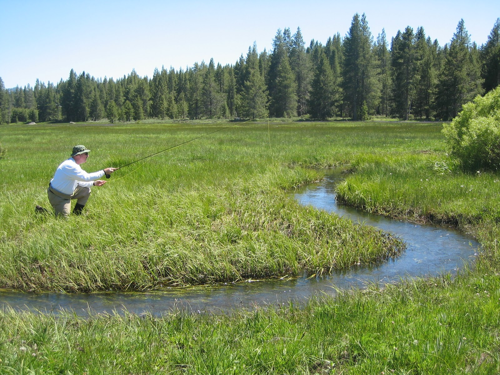 California Fly Fishing Spring Fly Fishing Options Other