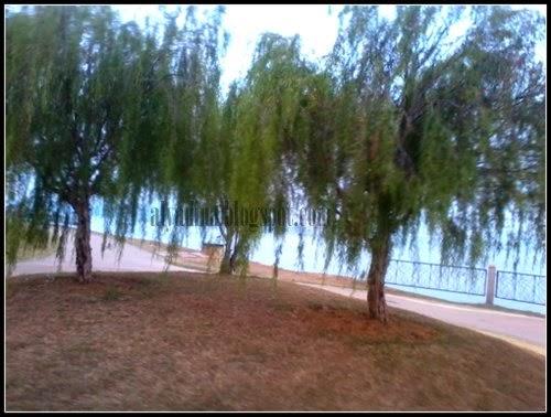 Cyberjaya Lake