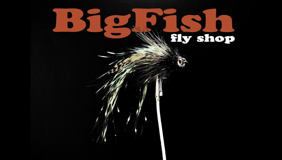 BigFish Fly Shop