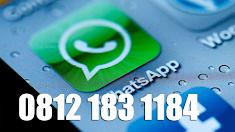 Hotline :