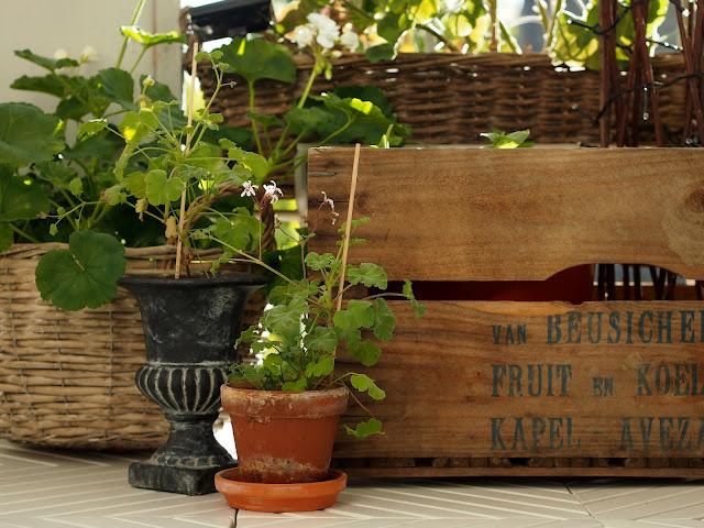 ruukku omenalaatikko kori riviera maison saviruukku terrakottaruukku parveke