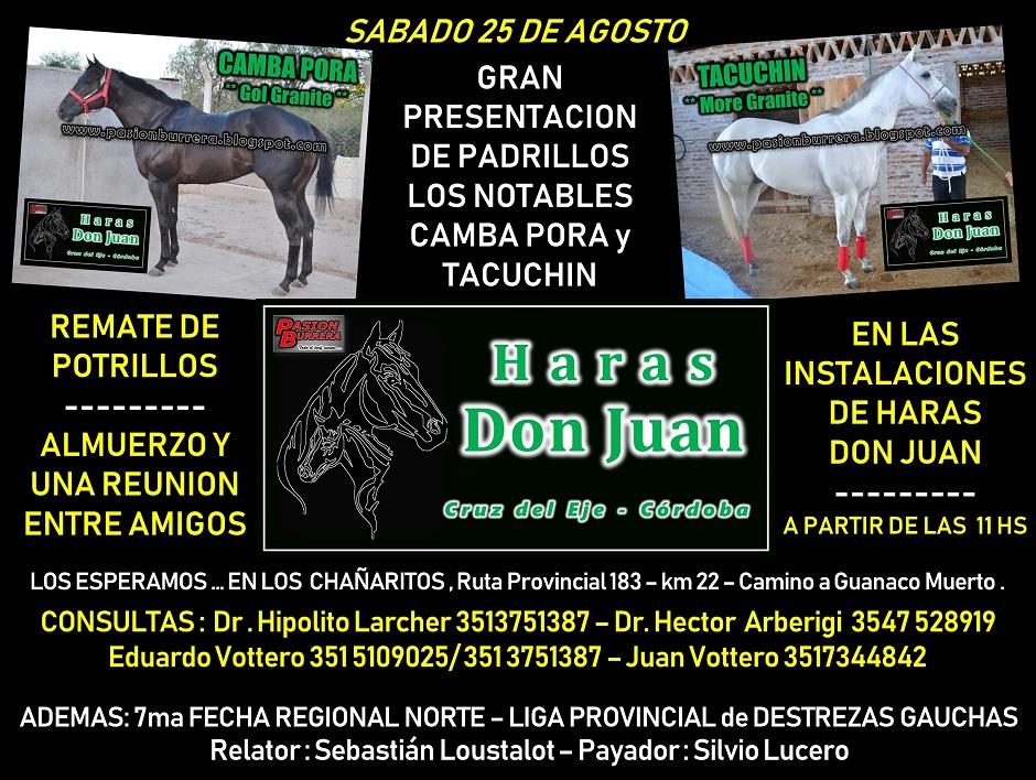 HARAS DON JUAN - 25 DE AGOSTO