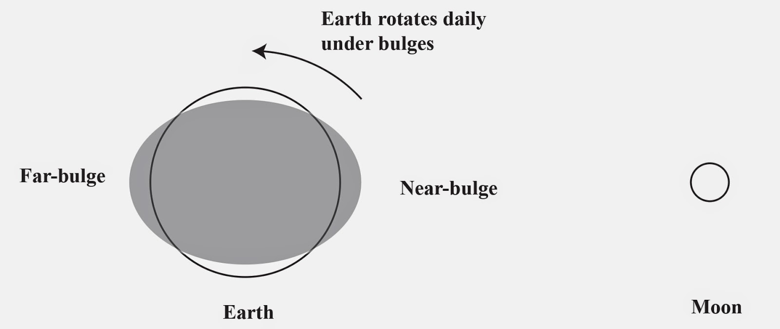 The art of wayfinding october 2014 figure 2 the residual tidal forces are symmetric and cause a near side and far side bulge that the earth rotates under daily nvjuhfo Image collections