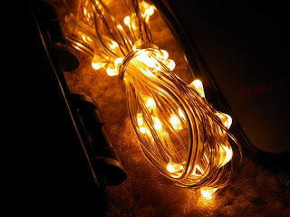 RTGS_30_LED_Micro_String_Lights.jpg