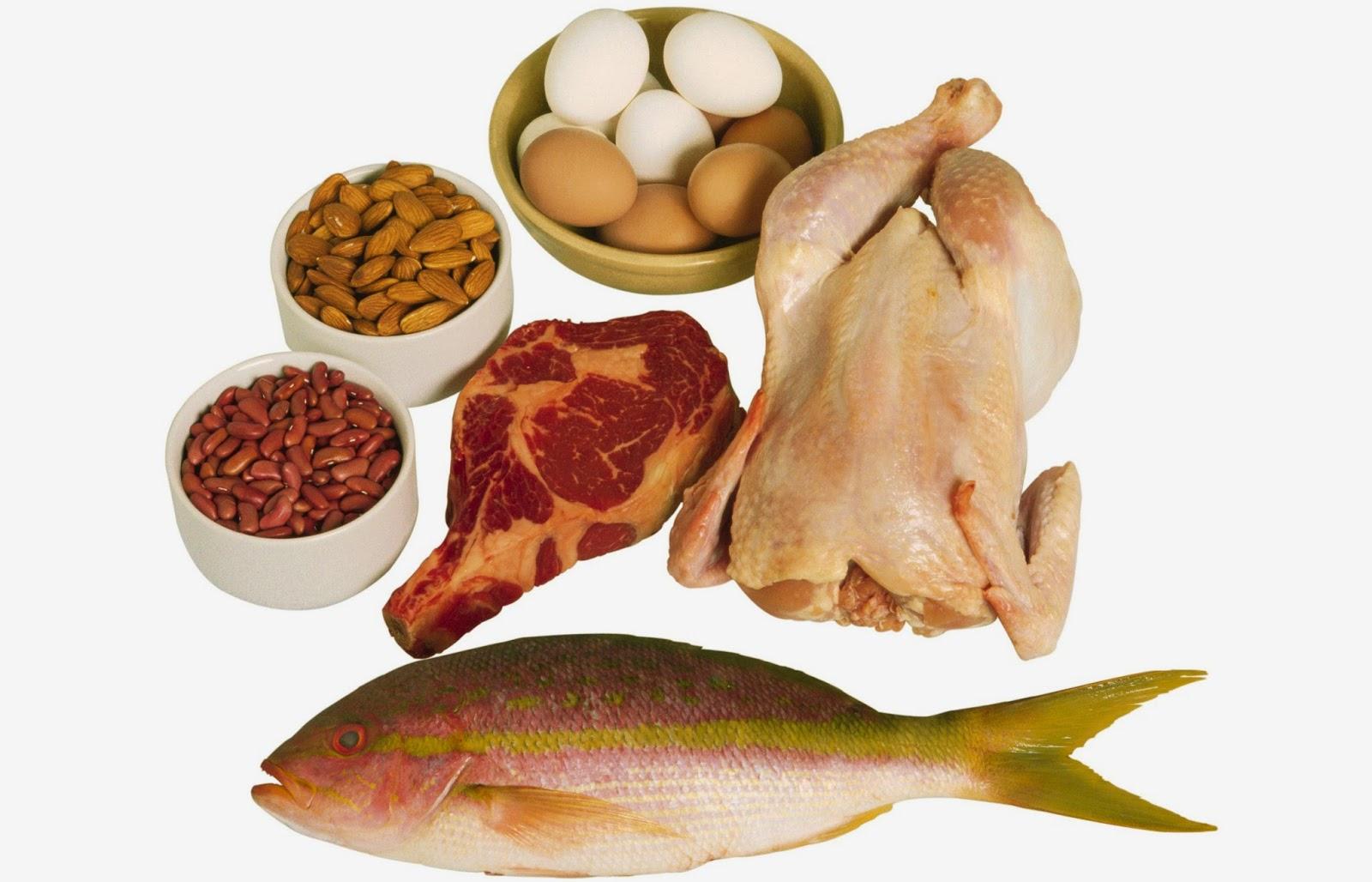 Popular S Makanan Yang Mengandung Protein