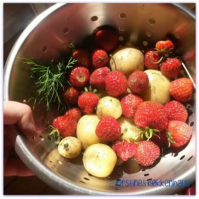 friskplukkede danske jordbær