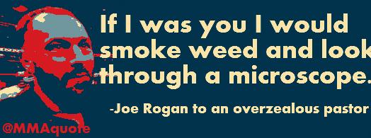 knowledge rogan marijuana paranoia