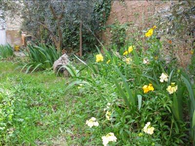 Ocio jard n definiendo clima y microclimas del jard n for Ocio y jardin