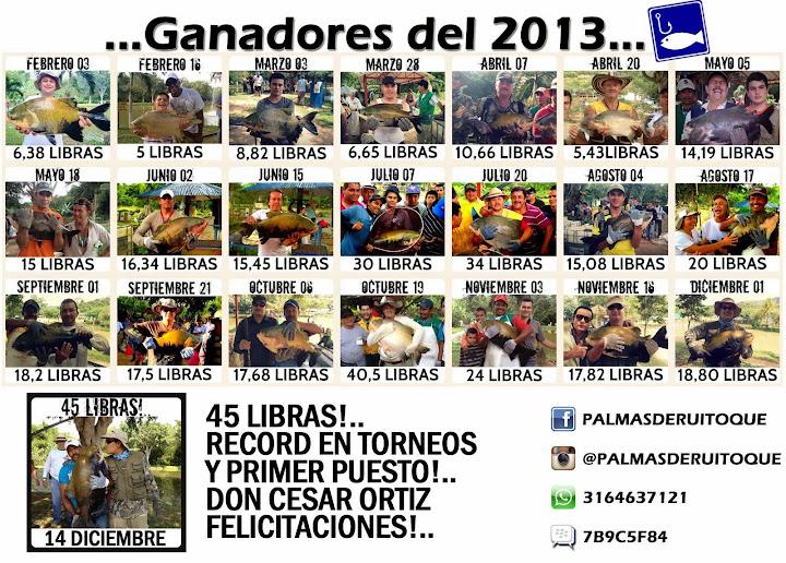 2013 CAMPEONES