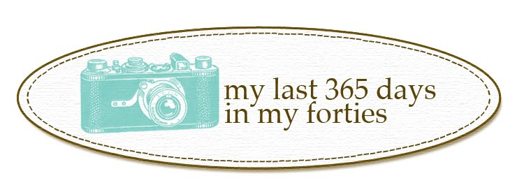My Last 365 Days in my Forties