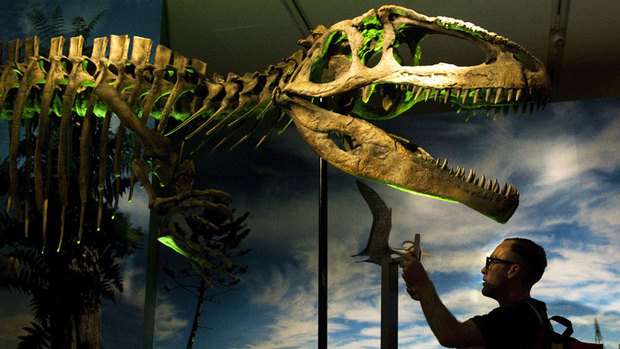 World's 'most unusual dinosaurs' to go on display in Toronto