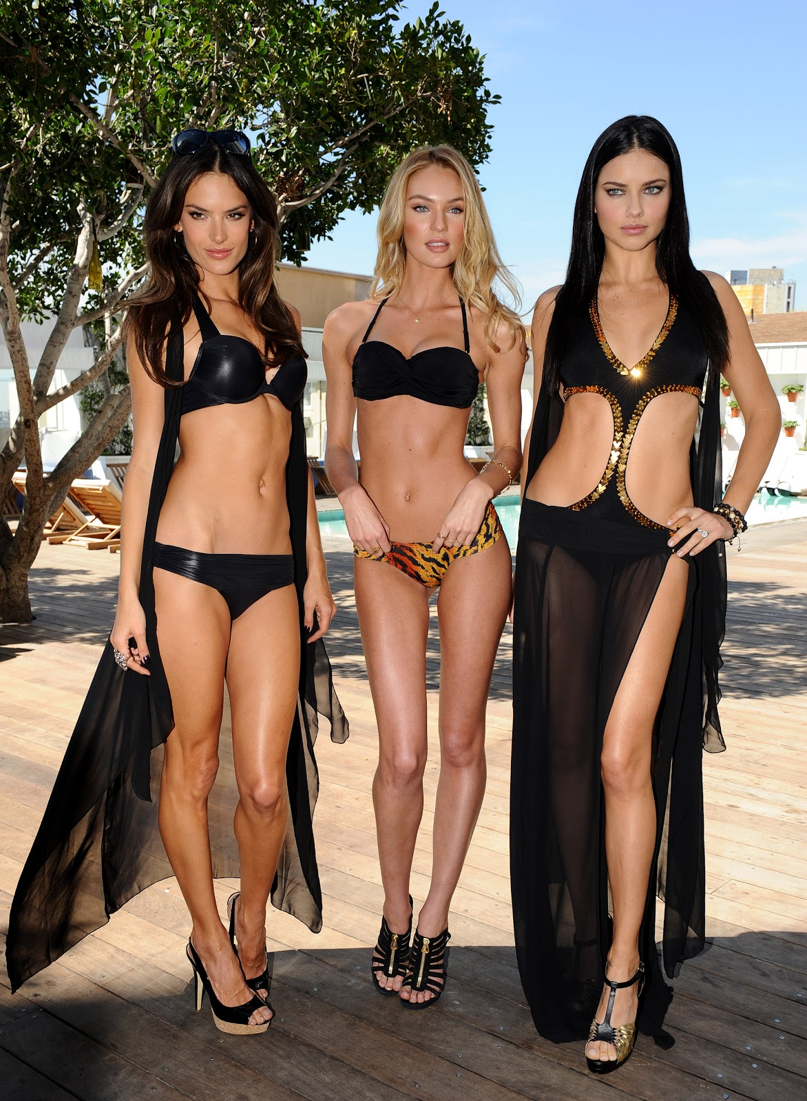 http://4.bp.blogspot.com/-v3-fnvgCu4E/TZPfaqhidWI/AAAAAAAAEqE/36iTzsZhWAE/s1600/13779_Victorias_Secret_Models_SWIM_Collection_2011_Launch_J0001_023_122_209lo.jpg