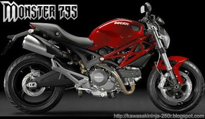 Ducati Monster 795 side view