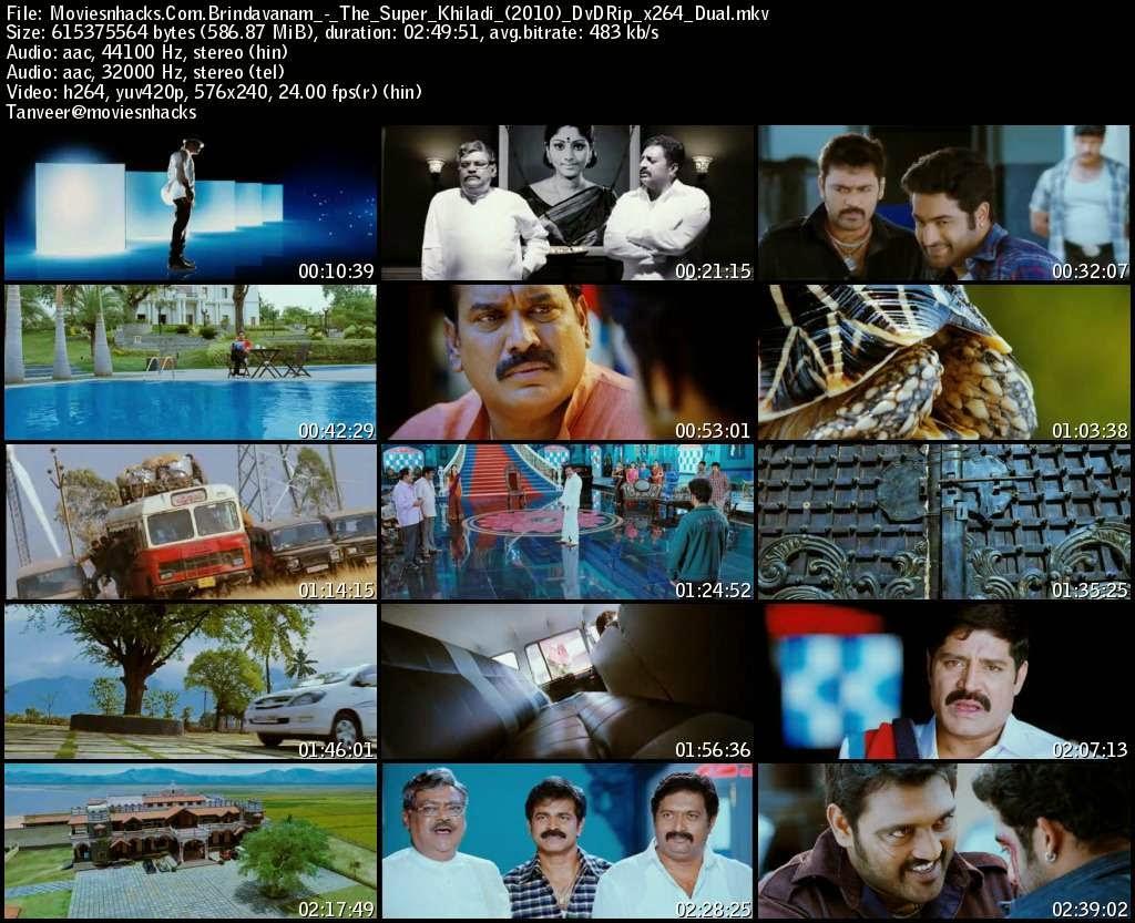 The Super Khiladi (Brindavanam) (2010) BDRip
