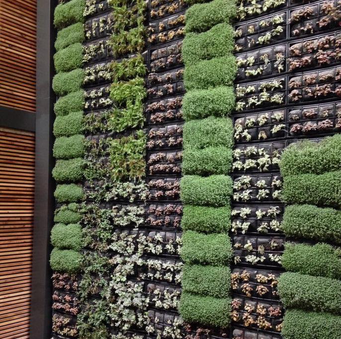 jardin vertical toledo