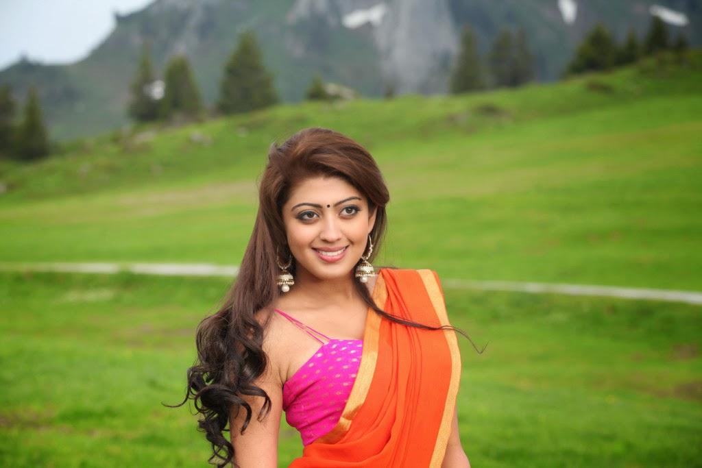 praneetha latest hot photos in saree hq pics n galleries