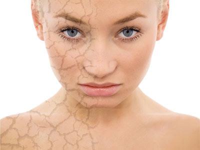Image result for prevent skin damage
