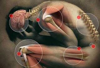 Raíz del dolor Osteopatía