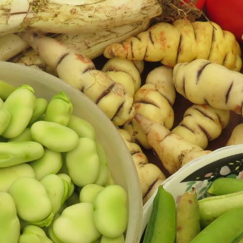 Saberes, sabor y sazón: al rescate de las tradiciones ancestrales