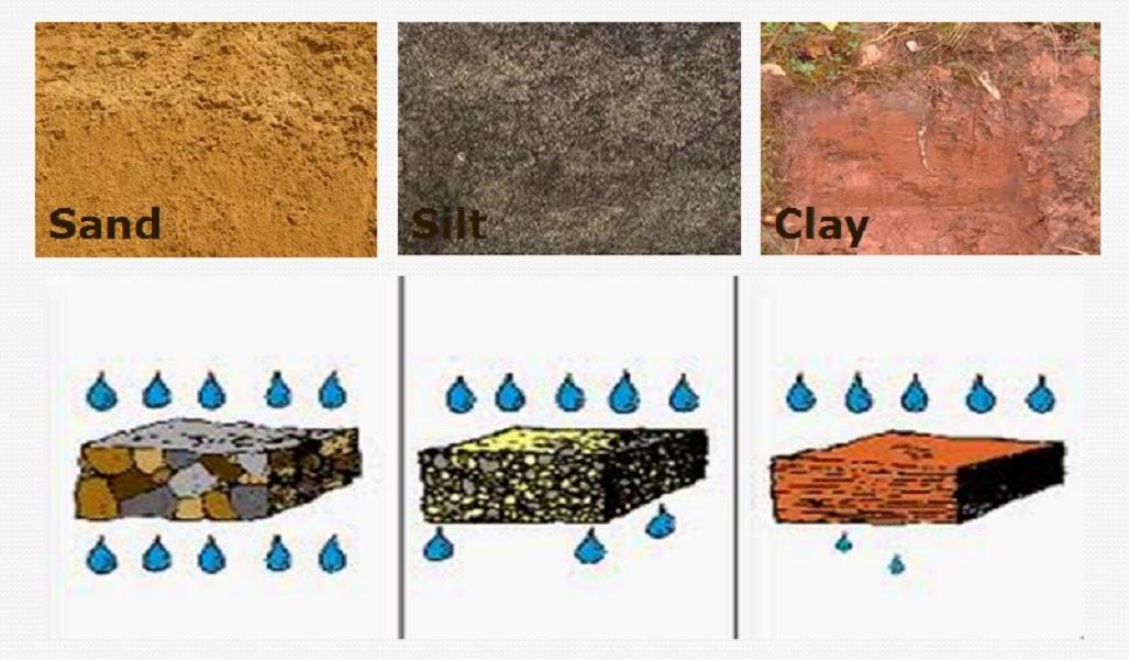 Rufinos 2 ciclo for Mineral soil vs organic soil