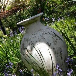 Urn in the Garden