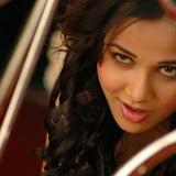 Nisha Kothari New stills (4)