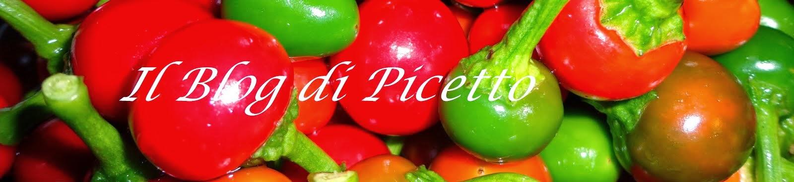Il Blog di Picetto