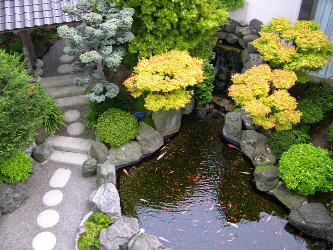 bentuk kolam ikan minimalis