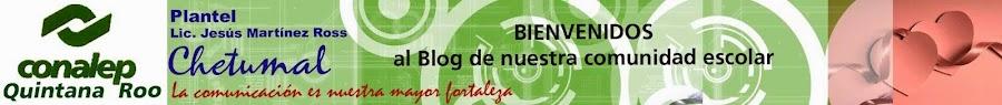 Conalep Plantel Chetumal