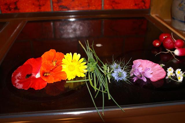Regenbogenbunte Blumen aus dem Garten