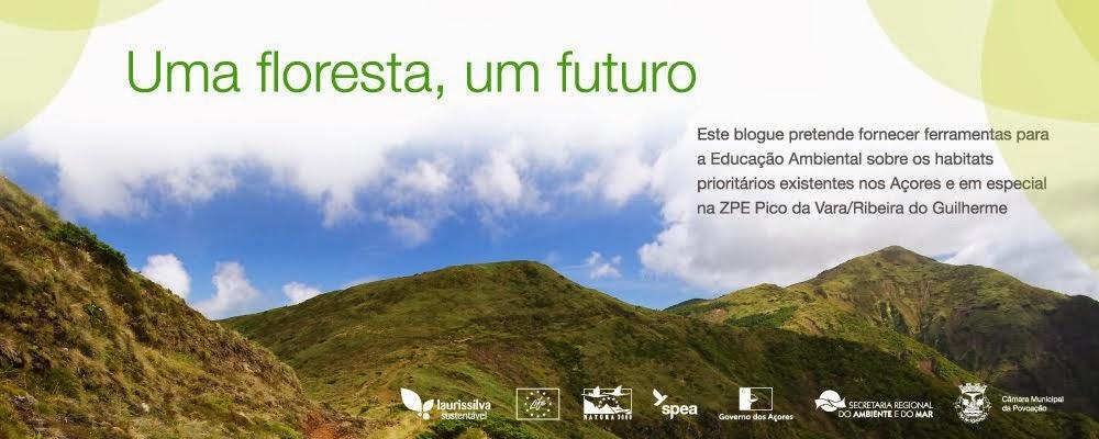 uma Floresta um Futuro