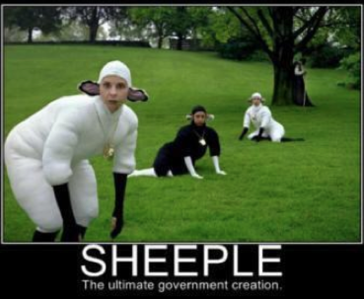 sheeple.png