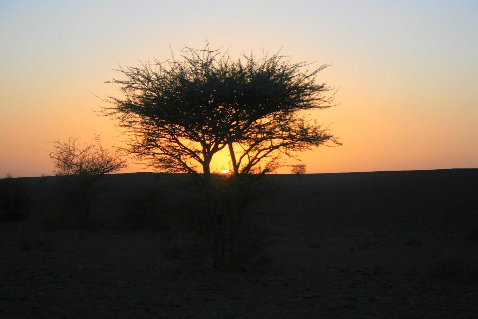 Viajar a marruecos, kasbah luna del sur, ouarzazate, atlas, desierto, felicidad