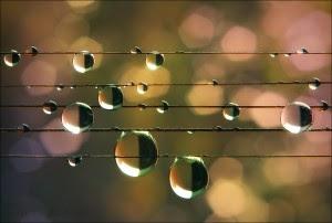 moralo bi biti drugače │ verjetno sem zdajle žalosten │ ali samo pada dež?