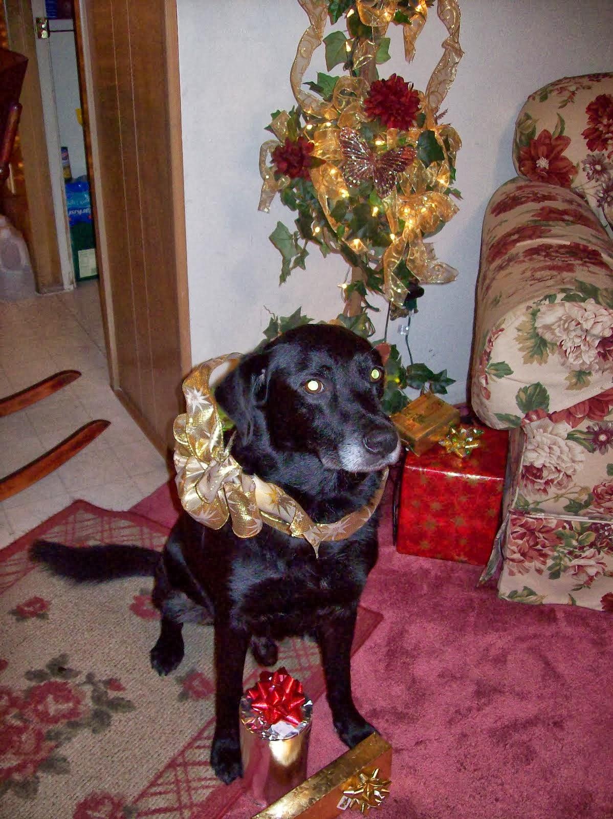 Jazz Christmas 2009