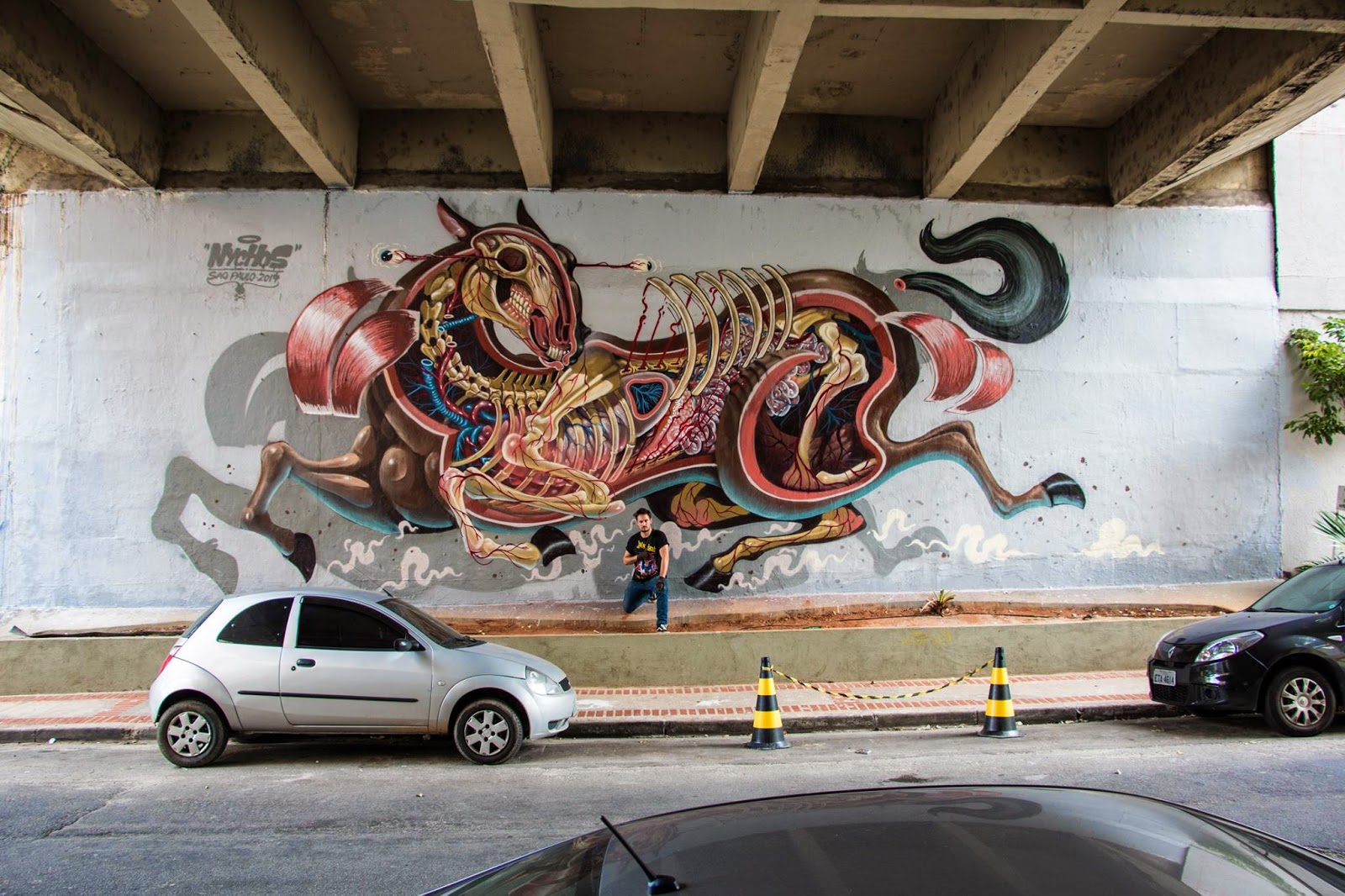 Last seen in Berlin, Germany last month for Urban Spree (covered), Nychos is now in South America where he just finished another signature piece somewhere on the streets of Sao Paulo in Brazil.