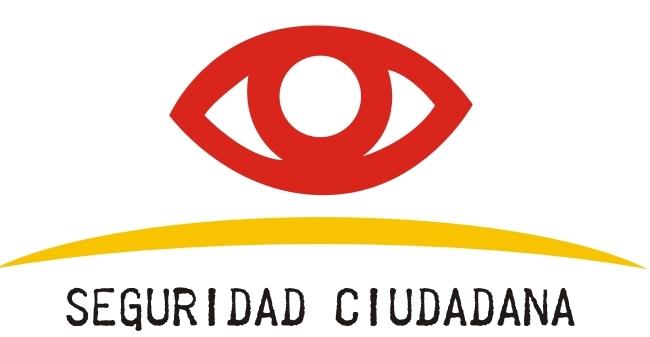 Soluciones Para La Inseguridad Ciudadana En Costa Rica