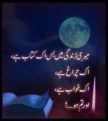 Urdu shairy point meri zindagi mein