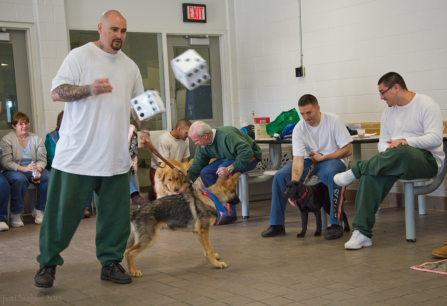 A bald man with a goatee wearing green pants and a white t-shirt has just tossed a pair of six inch dice. The dice are out of focus in mid-air in front of him. His left hand is holding the leash of a young german shepherd puppy, who is pulling to the right toward a small black lab. There are two other men sitting on the right side. The first man, wearing blue pants and a white t-shirt, is holding the leash of the black lab, who is standing between his legs looking at the german shepherd. The man's right hand is reaching toward the puppy's chest. The man on the far right is wearing green pants and a long sleeved white t-shirt and glasses; he is looking down at the puppy and he has his left leg crossed over his right leg at the ankle. There are several other people sitting behind the man standing.