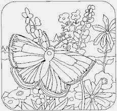 Mewarnai gambar bunga dan kupu-kupu untuk anak 11
